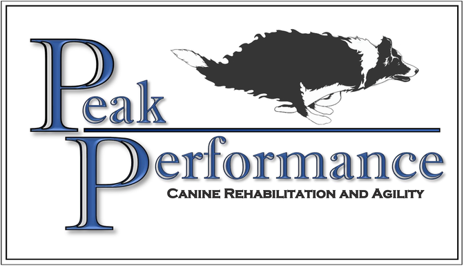 Peak Performance Canine Rehabilitation and Agility