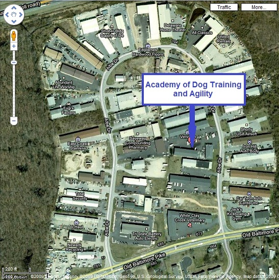 Satellite Image of the Academy on Albe Drive