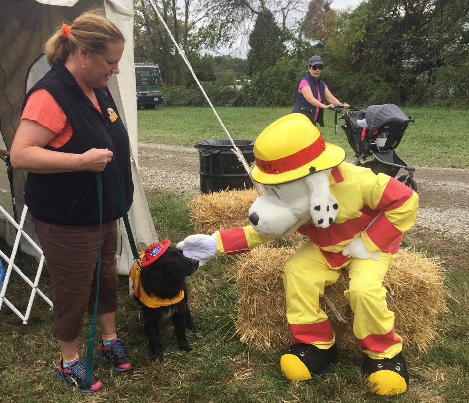 "Outside events ""Quina and Jake meeting Fire dog"""